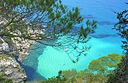 Click on this image if you want to discover Formentera